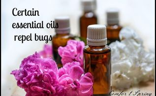 tell bugs to bug off natural remedies to repel bugs