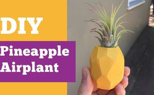 pineapple air plant fridge magnet