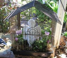 bird cages blooms and kisses
