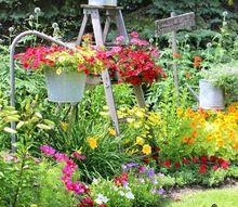planting a junk garden border 2017