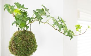 how to make hanging moss ball planters