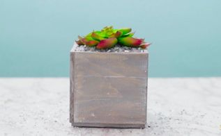 diy mini planter box