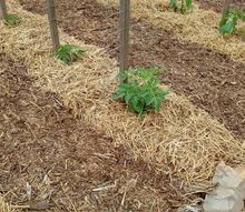 how to eradicate weeds from your garden make gardening fun, Mulch plays a big role