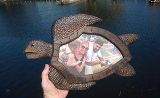 diy sea turtle picture frame