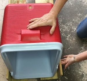 s 10 fun coolers your family can build to keep drinks cool
