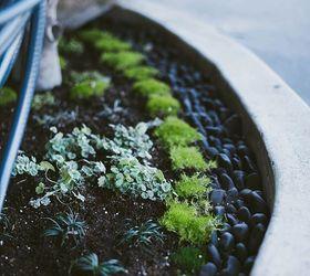 Japanese Inspired Garden ... Part 91