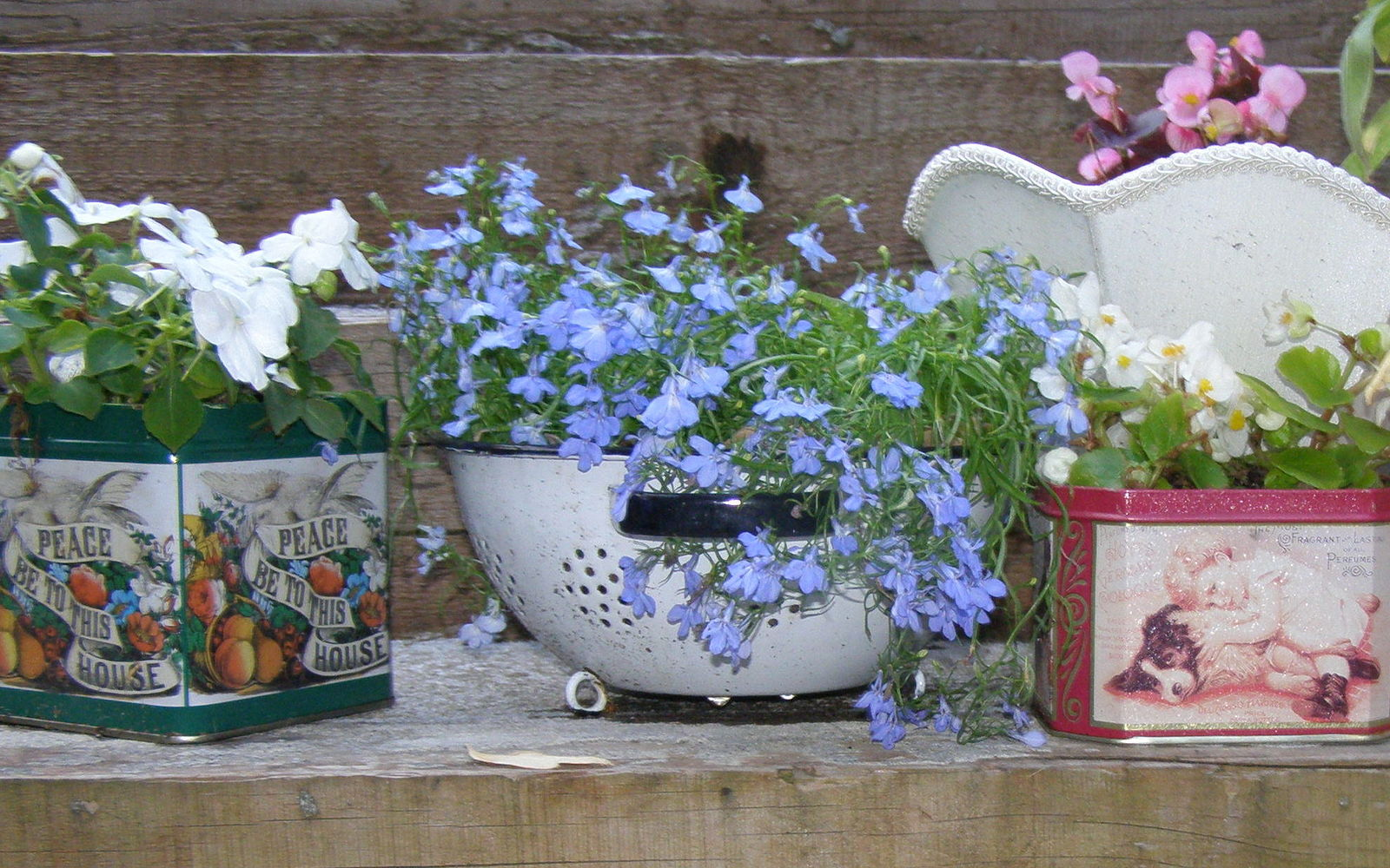 s 15 lovely repurposed items perfect for your garden, Recycle Candy Tins Into Garden Containers