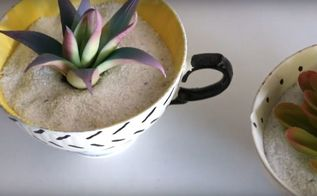 diy thrifted updates succulent tea cups