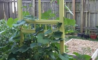 repurposed garden trellis