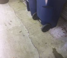 q how to preventing algae stains on concrete