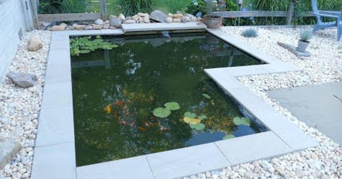 Diy modern backyard koi pond on a budget hometalk for Pond size for koi