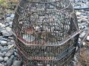 q do you know about this all metal birdcage thinking of painting it