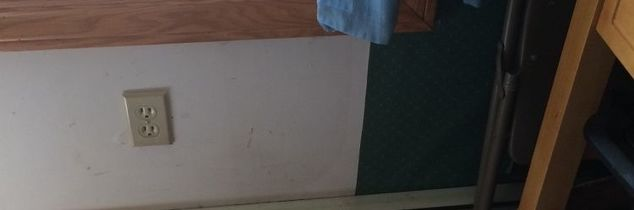 q painting walls that had been wallpapered