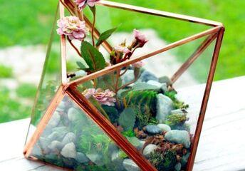 diy geometric terrarium