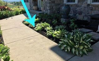 you can make your garden borders look perfectly pristine for almost no money by