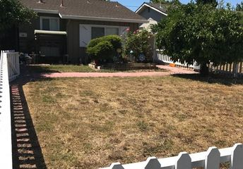 q how to transform a dead lawn into low maintenance beauty