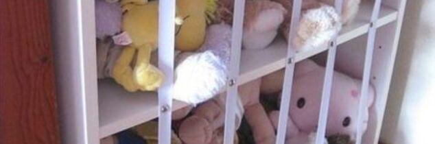q zoo for stuffed animals