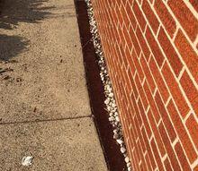 q ideas needed for sidewalk
