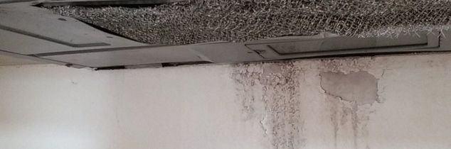 q a leak above my microwave has led to a mold situation