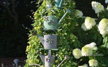 using a ladder as a garden trellis and favorite summer vine