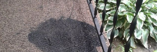 q i spilled black acrylic paint on my new outdoor rug