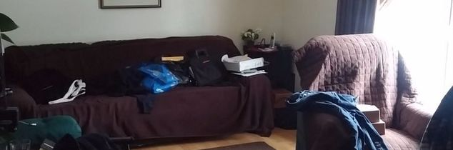 q i have a very narrow livingroom and how i could decorate it to sell