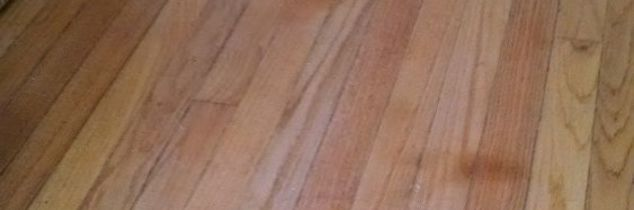 q how to get dog pee stains out of hardwood floors