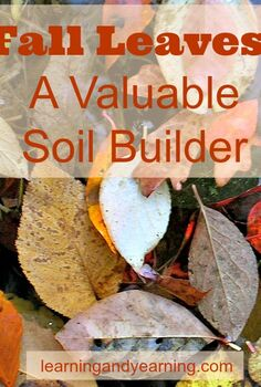 fall leaves a valuable soil builder, gardening, landscape, lawn care