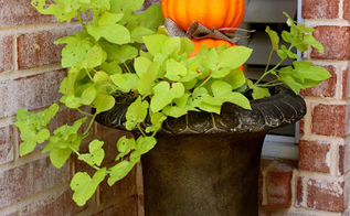 fall door and pumpkin topiary, crafts, doors, foyer, home decor, seasonal holiday decor, thanksgiving decorations, wreaths, Pumpkin Topiary