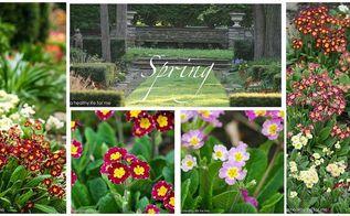 spring garden, gardening