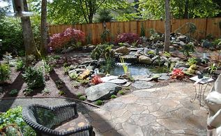 before and after hillsboro oregon backyard renovation, flowers, outdoor living, patio, pets animals, ponds water features, The finished Hillsboro Oregon backyard where Orenco Station homeowners Rick and Diane enjoy the start of the day
