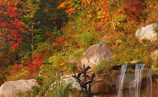 free seminar how to prepare your water garden for fall amp winter, outdoor living, ponds water features