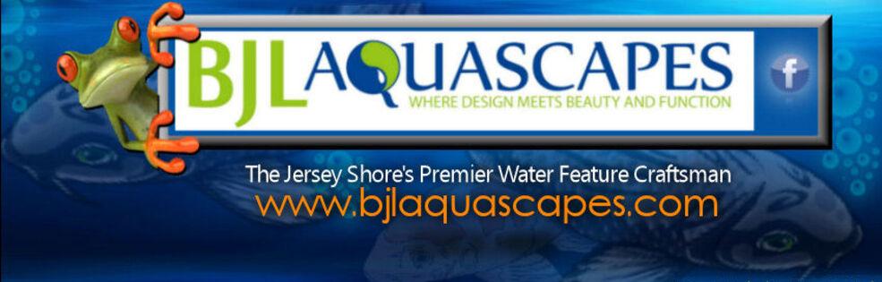 BJL Aquascapes cover photo
