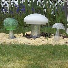 mushrooms flowers and gnomes oh my, flowers, gardening, Close up of the mushrooms