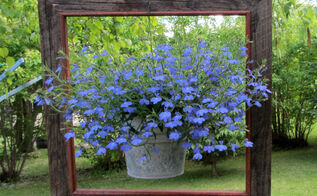 my top five junk garden posts of 2013, flowers, gardening, repurposing upcycling, Number two garden post framed lobelia