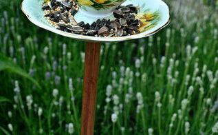 make a diy teacup birdfeeder, gardening, repurposing upcycling