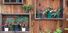 fence shadow box gardener community, fences, gardening