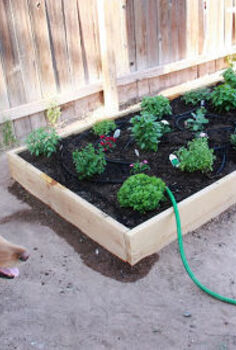 planting a kitchen garden, diy, gardening, homesteading, kitchen design, raised garden beds, woodworking projects
