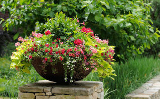 a radical idea for container gardens, container gardening, flowers, gardening, Thriller filler spiller Time to rethink that says Annie Hayes Photo via HGTV com