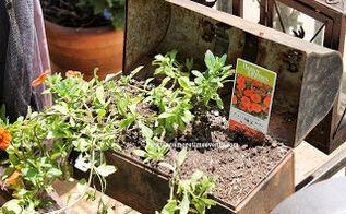 unique container garden ideas, container gardening, gardening