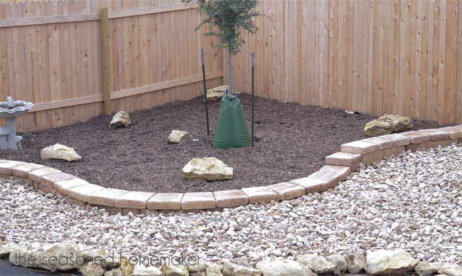 What are some examples of yard drainage solutions on a budget?