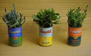 soup can planters, gardening, repurposing upcycling, succulents, I purchased a few succulents from Home Depot and replanted them in each can
