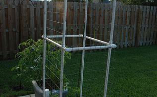 easy pvc tomato trellis, gardening, raised garden beds, repurposing upcycling