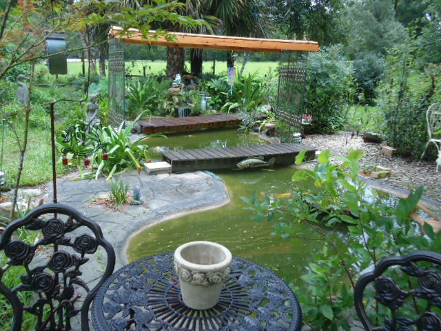 I garden with plants for wildlife and butterflies and for Koi pond shade ideas