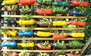colourful bottle planters, gardening, pallet, repurposing upcycling