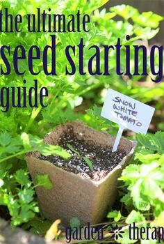 the ultimate seed starting guide, container gardening, gardening