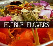 edible flowers, flowers, gardening