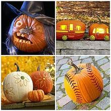 pumkin decorating ideas, seasonal holiday d cor, A few of my favorite pumkins for this year Be sure to check out my post for many more
