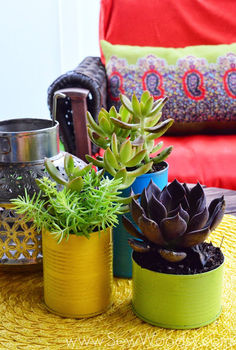 aluminum can succulent garden, flowers, gardening, repurposing upcycling, succulents