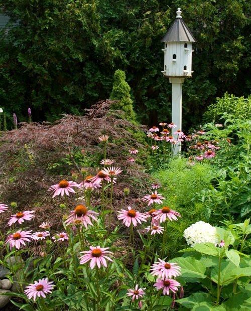 Placing birdhouses in the garden hometalk for Types of birdhouses